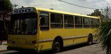 linea-500-amarillo